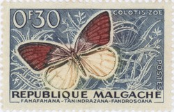 Colotis zoe Butterfly: 0.30-Franc Postage Stamp