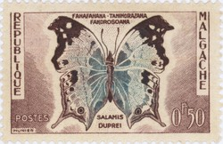 Salamis duprei Butterfly: 0.50-Franc Postage Stamp