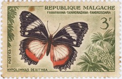 Hypolimnas dexithea Butterfly: 3-Franc Postage Stamp