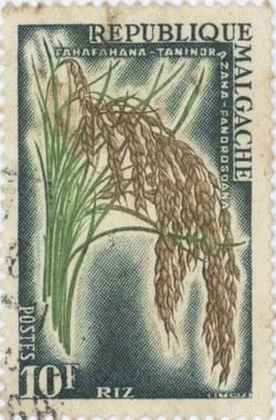 Rice: 10-Franc Postage Stamp