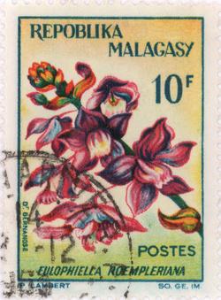 Eulophiella roempleriana: 10-Franc Postage Stamp