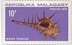 Murex tribulus: 10-Franc Postage Stamp