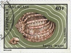 Harpa major: 40-Franc Postage Stamp