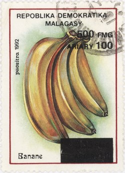 Bananas: 555-Franc (100-Ariary) Postage Stamp with 500-Franc Surcharge