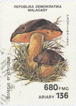 Boletus erythropus: 680-Franc (136-Ariary) Postage Stamp