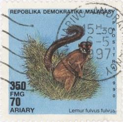 Lemur fulvis fulvus: 350-Franc (70-Ariary) Postage Stamp