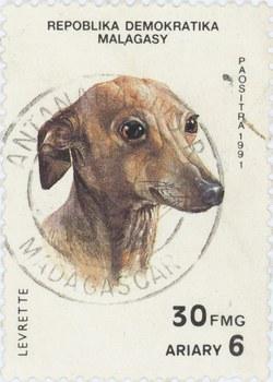 Greyhound: 30-Franc (6-Ariary) Postage Stamp