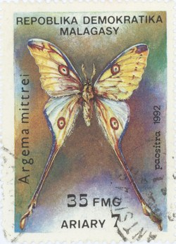 Argema mittrei: 35-Franc (7-Ariary) Postage Stamp