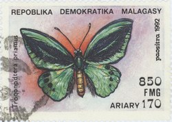 Trogonoptera priamus: 850-Franc (170-Ariary) Postage Stamp
