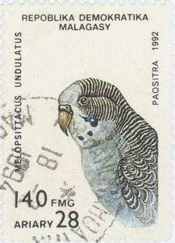Melopsittacus undulatus: 140-Franc (28-Ariary) Postage Stamp