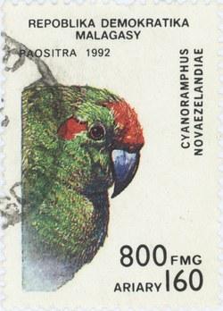 Cyanoramphus novaezelandiae: 800-Franc (160-Ariary) Postage Stamp