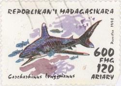 Carcharhinus longimanus: 600-Franc (120-Ariary) Postage Stamp