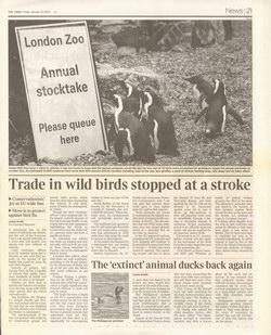 The 'extinct' animal ducks back again: The Times, Friday January 12 2007