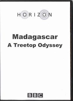 Madagascar: A Treetop Odyssey
